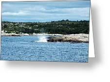 Peaceful Cove Greeting Card