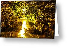 Peaceful Day In Summer Greeting Card