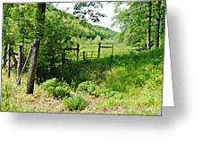 Peaceful Field Greeting Card by Stephanie Grooms