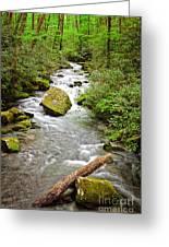 Peaceful Flowing Waters Greeting Card