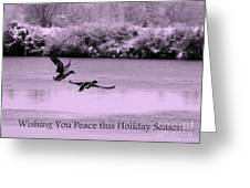 Peaceful Holidays Card - Winter Ducks Greeting Card
