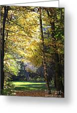 Peaceful Path Greeting Card by Kathy DesJardins