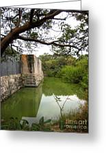 Peaceful Pond Greeting Card by Claudette Bujold-Poirier