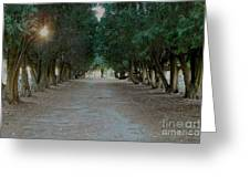 Peaceful Resting Place Greeting Card