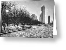 Peaceful Side Of Chicago Greeting Card