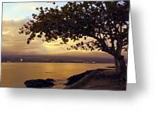 Peaceful Sundown On Hilo Bay - Hawaii Greeting Card