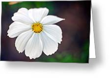 Peaceful Greeting Card by Tammy Smith