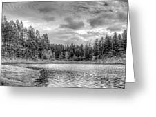 Peaceful Times 2 Black And White Greeting Card