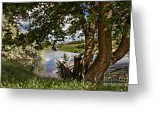 Peaceful View Greeting Card by Robert Bales