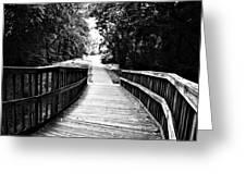 Peaceful Walkway Blackwhite Greeting Card by Stephanie Grooms