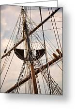 Peacemaker Rigging Greeting Card