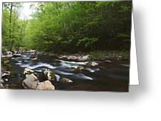 Peaceful Stream Greeting Card