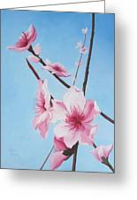 Peach Blossoms Greeting Card