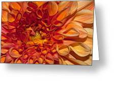 Peach Dahlia Greeting Card