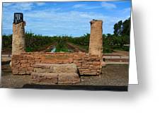 Peach Orchard And Ruins Greeting Card