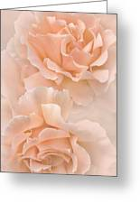 Peach Rose Flowers Bouquet Greeting Card