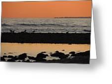 Peach Sunset On The Beach Greeting Card