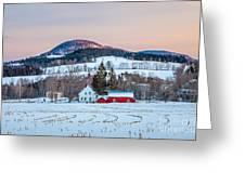 Peachan In Snow Greeting Card