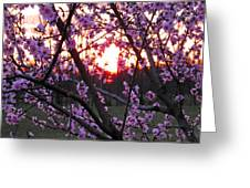 Peachy Sunset 2 Greeting Card