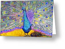 Peacock Dance Greeting Card