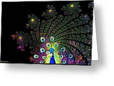 Peacock Explosion Display Greeting Card