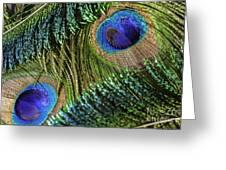 Peacock Eye And Sword Greeting Card