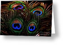 Peacock Eye Feathers Greeting Card