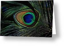 Peacock Eye Greeting Card
