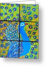 Peacock Ix Greeting Card