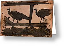 Peahens Greeting Card