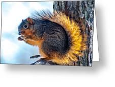 Peanut Breakfast Greeting Card