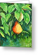 Pear Greeting Card by Zaira Dzhaubaeva