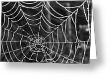 Pearl Web Greeting Card