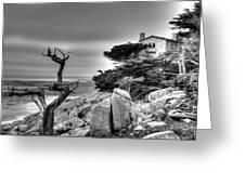Pebble Beach 2 Greeting Card
