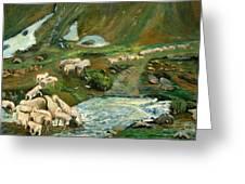 Pecore Greeting Card by Niki Mastromonaco