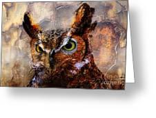 Peeking Owl Greeting Card