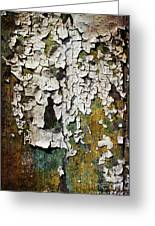 Peeling Paint Greeting Card