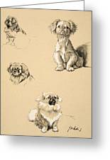 Pekes, 1930, Illustrations Greeting Card
