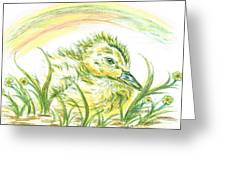 Pekin Duckling Greeting Card