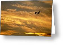 Pelican Against The Golden Sky Greeting Card