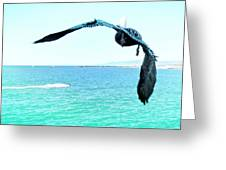 Pelican And Jetski Greeting Card by Brian D Meredith