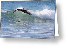 Pelican At Playa Grande Greeting Card