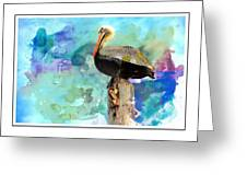 Pelican Colours Greeting Card