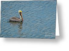Pelican Drifting On Rippled Water Greeting Card