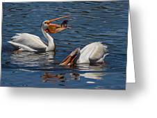 Pelican Fishing Buddies Greeting Card by Kathleen Bishop