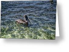 Pelican Floater Greeting Card