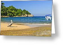 Pelican On Beach Greeting Card