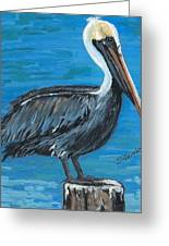 Pelican On Post Greeting Card