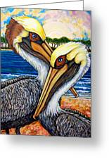 Pelican Pair Greeting Card by Sherry Dole