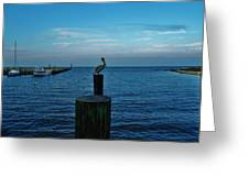 Pelican Pamlico Sound Hatteras 2/11 Greeting Card